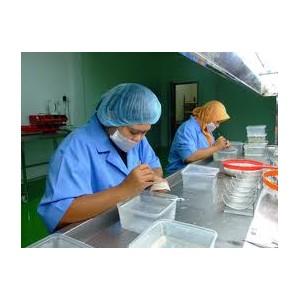 bird nest processing, bird nest processing malaysia, bird nest processing supplier malaysia, bird nest processing sourcing malaysia.