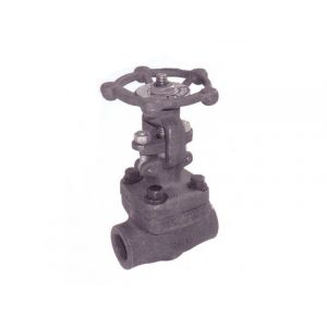 Forged Steel Gate Valve Class 800 and FE Class 150,300,600