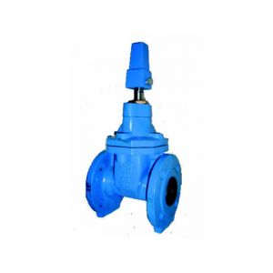 Ductile Iron Resilient Seated Gate Valve PN16 FE (NRS)