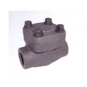 Forged Steel Check Valve Class 800# (NPT,SW) 1