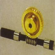 Worm Gear with Shaft