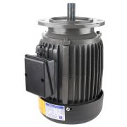 TAIWAN HIGH EFFICIENT INDUCTION MOTOR 1HP / 2HP 3PHASE 415V 50HZ